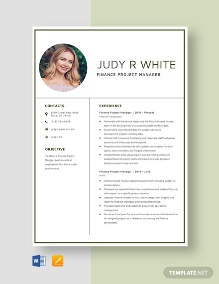 Finance Project Manager Resume Template