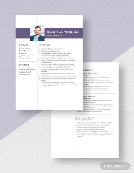College Counselor Resume Download