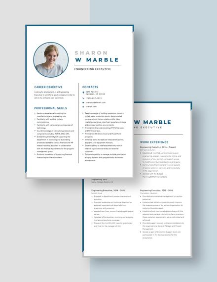 Engineering Executive Resume Download