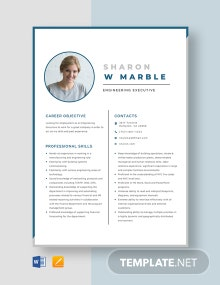 Engineering Executive Resume Template
