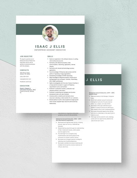Enterprise Account Executive Resume Download
