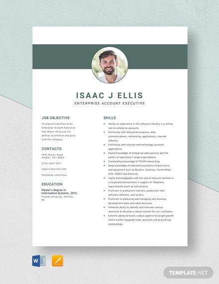 Enterprise Account Executive Resume Template