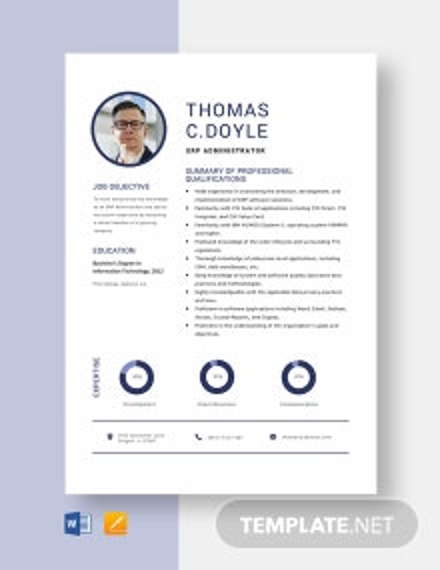 ERP Administrator Resume Template