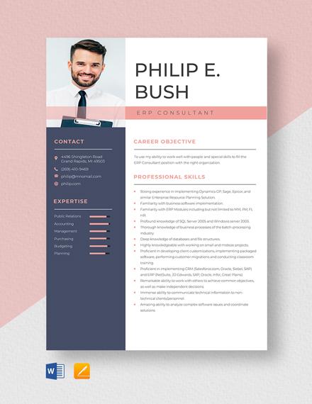 ERP Consultant Resume Template