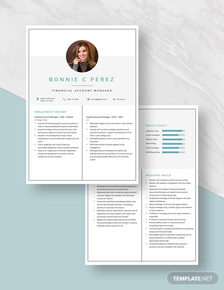 Financial Account Manager Resume Download