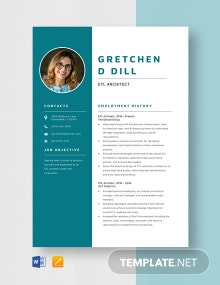 ETL Architect Resume Template