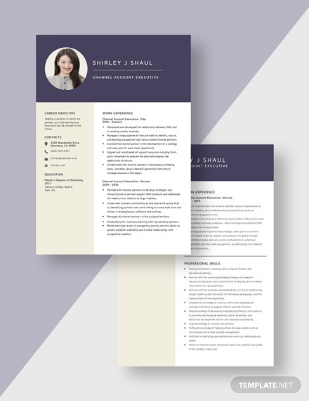 Channel Account Executive Resume Download