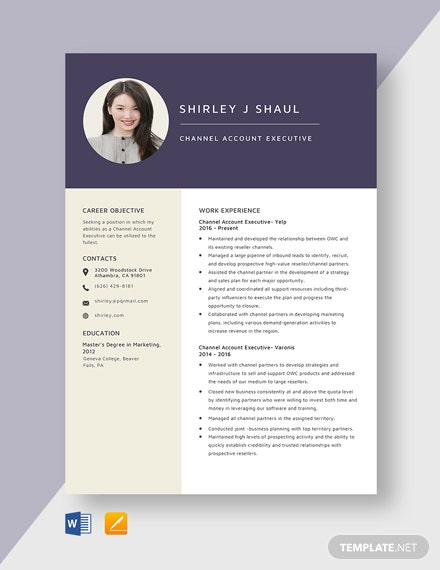 Channel Account Executive Resume