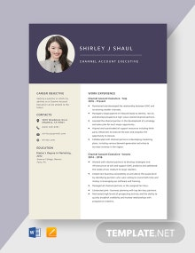 Channel Account Executive Resume Template