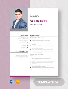 Chief Risk Officer Resume Template