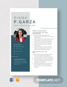 Chief Strategy Officer Resume Template