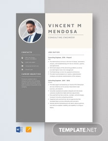 Consulting Engineer Resume Template