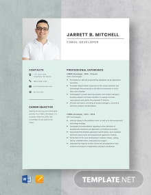 COBOL Developer Resume Template
