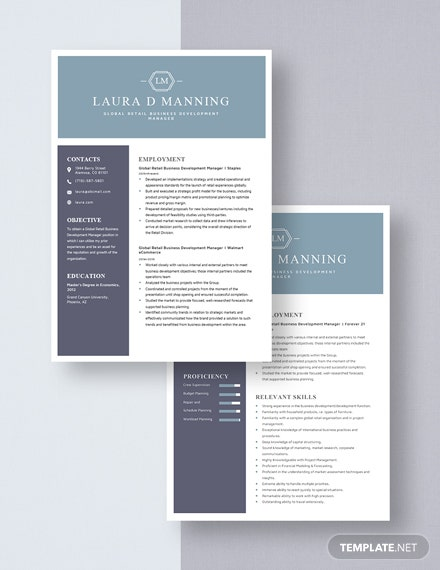 Global Retail Business Development Manager Resume Download