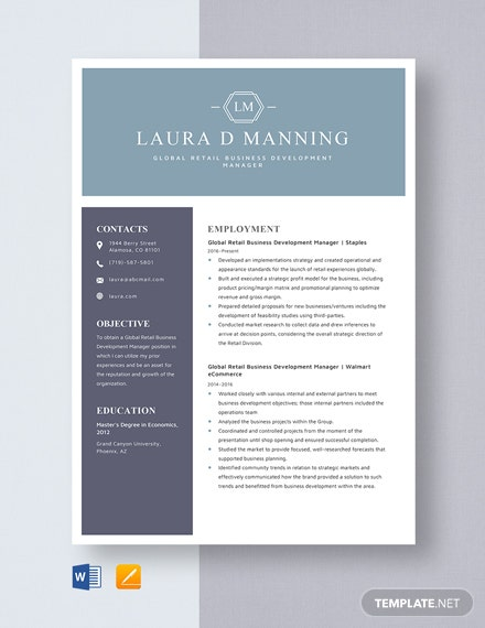 Global Retail Business Development Manager Resume Template