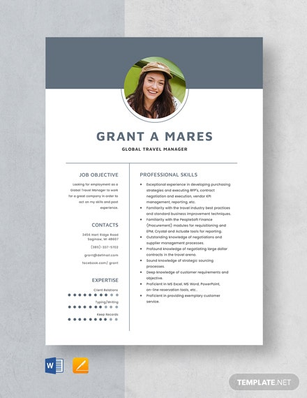 Global Travel Manager Resume Template
