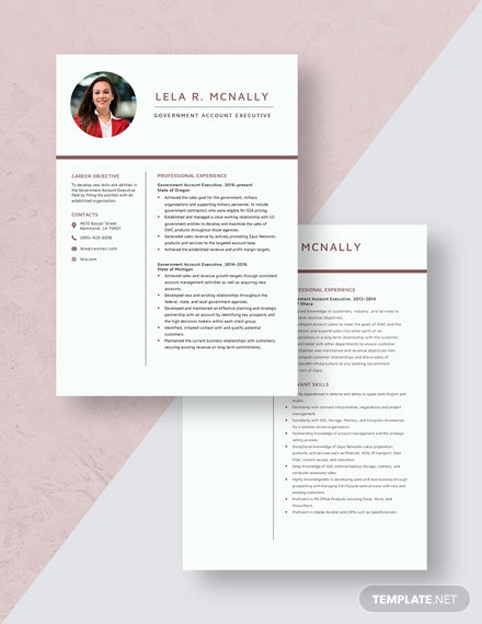 Government Account Executive Resume  Download