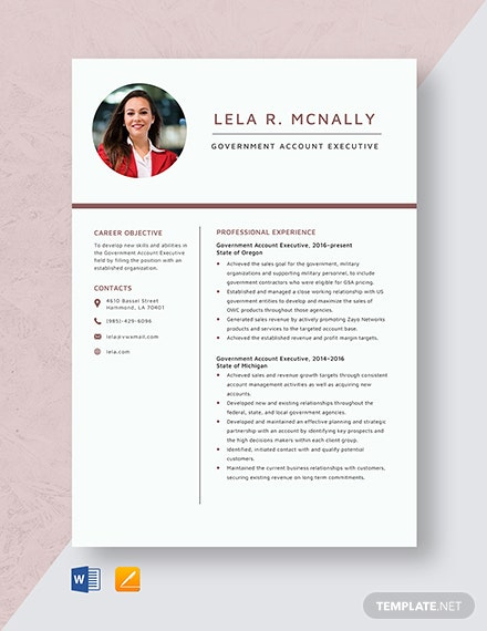 Government Account Executive Resume Template
