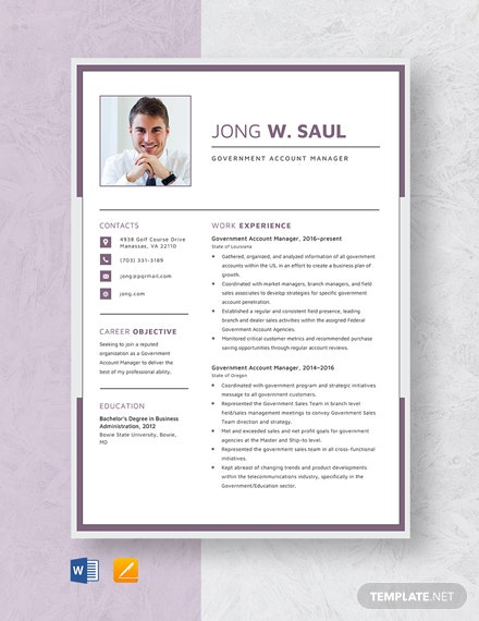 Government Account Manager Resume Template