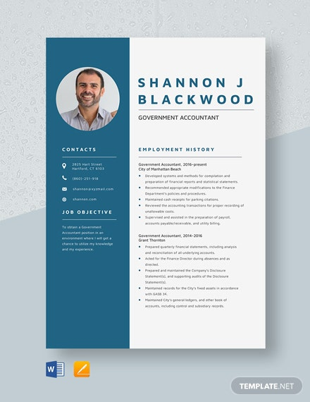 Government Accountant Resume Template