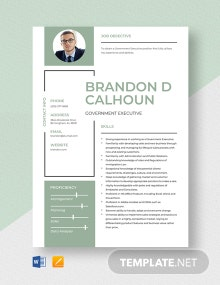 Government Executive Resume Template