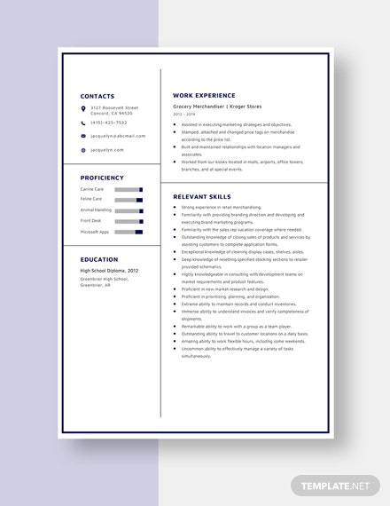 Grocery Merchandiser Resume  Template