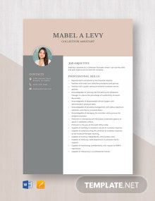 Collection Assistant Resume Template
