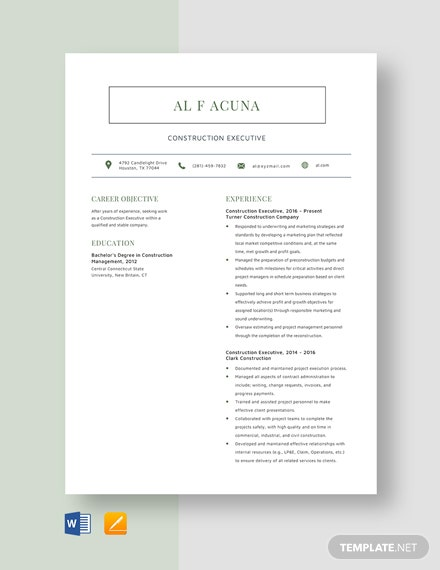 Construction Executive Resume Template