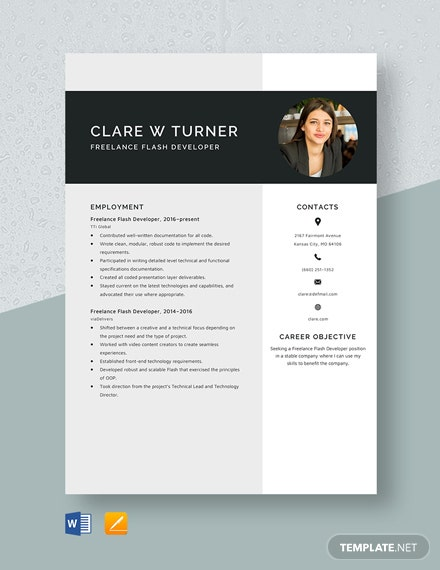 Freelance Flash Developer Resume Template