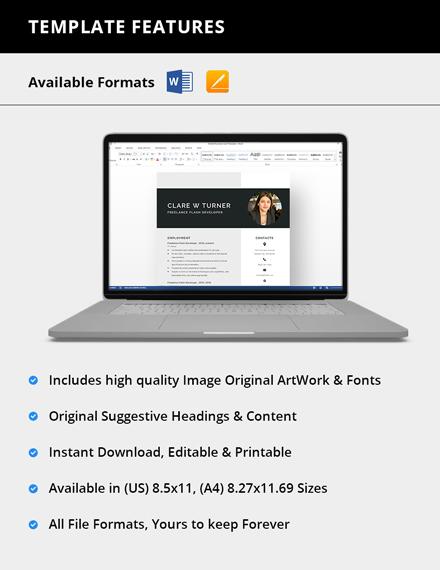 Freelance Flash Developer Resume  Download