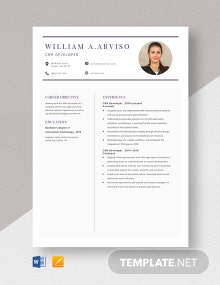 CRM Developer Resume Template