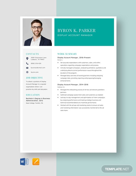 Display Account Manager Resume Template