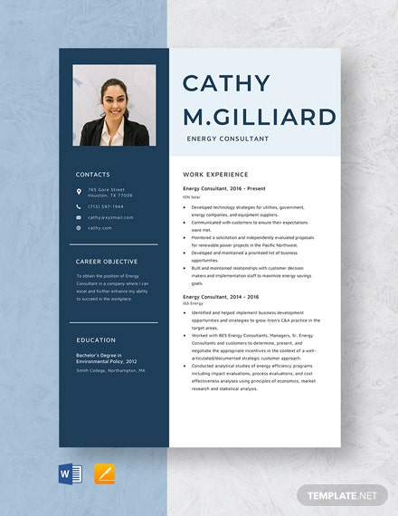 Energy Consultant Resume Template