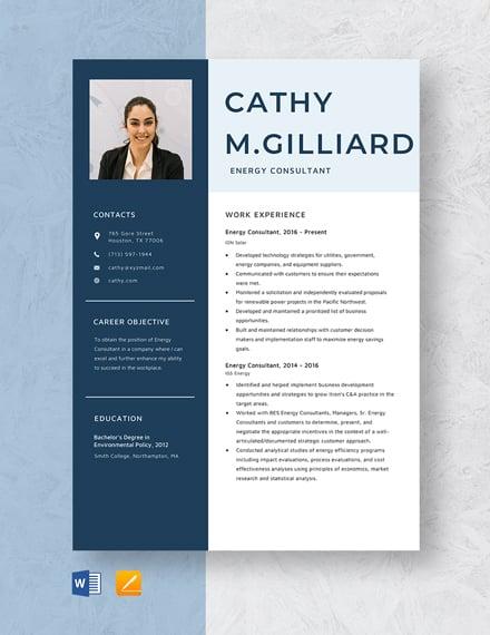 Energy Consultant Resume Template