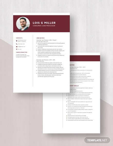 Consumer Loan Processor Resume  Download