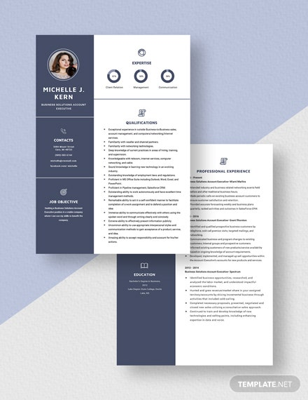 Business Solutions Account Executive Resume Download