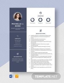 Business Solutions Account Executive Resume Template