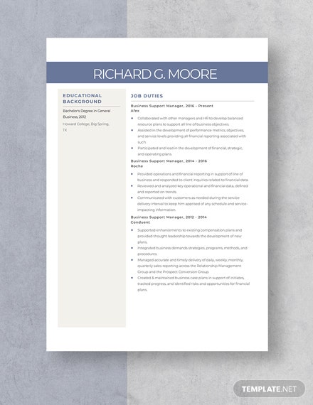 Business Support Manager Resume  Template