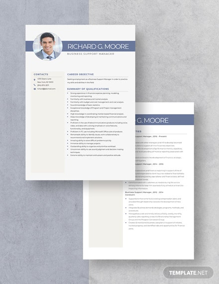 Business Support Manager Resume Download