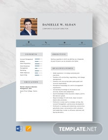 Corporate Account Director Resume Template