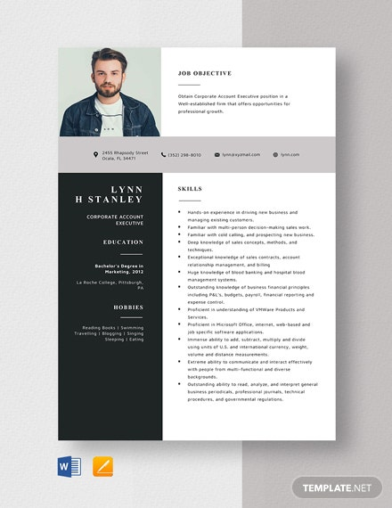 Corporate Account Executive Resume Template