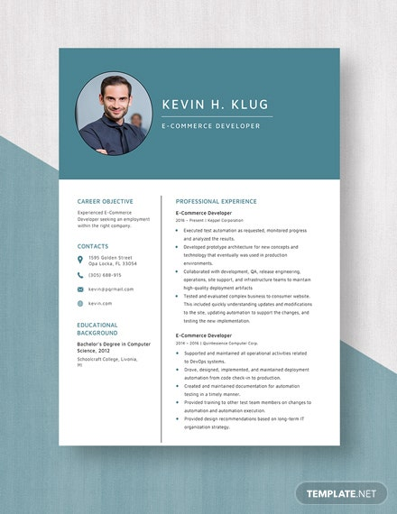 E-Commerce Developer Resume Template