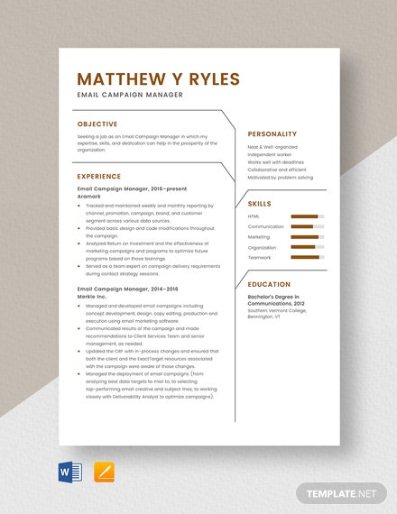 Email Campaign Manager Resume Template