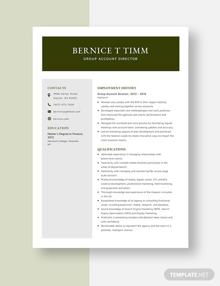 Group Account Director Resume Template