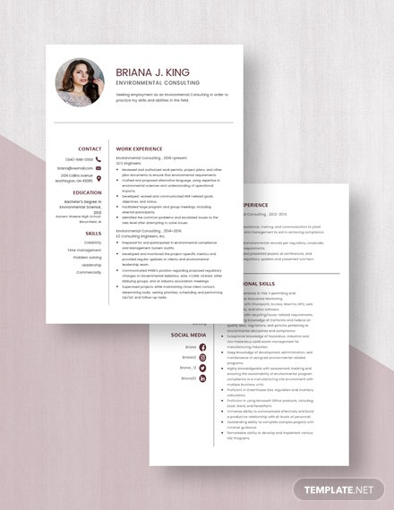 Environmental Consulting Resume Download