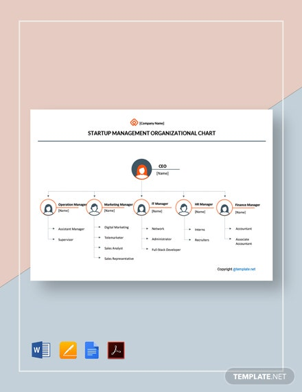 Free Startup Management Organizational Chart Template