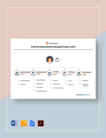 Free Startup Management Organizational Chart Template
