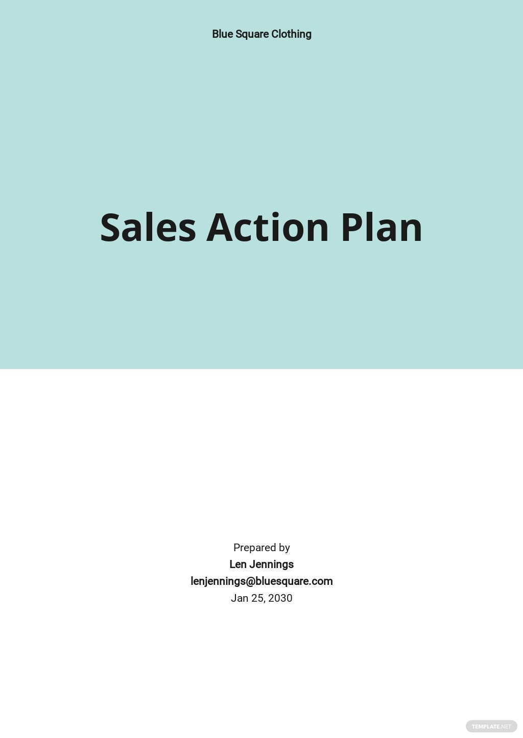 Business Sales Action Plan Template.jpe