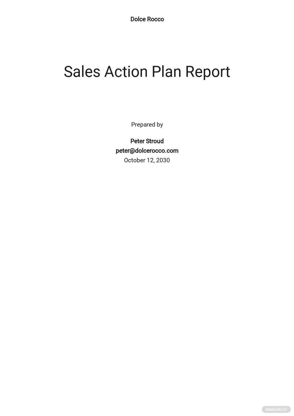 Sales Action Plan Report Template