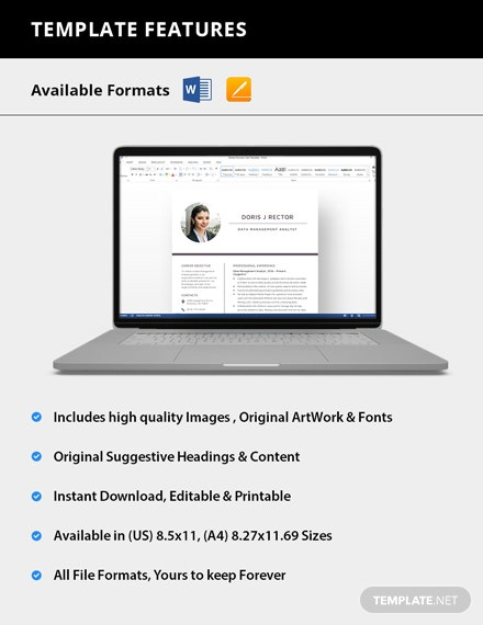 Simple Data Management Analyst Resume
